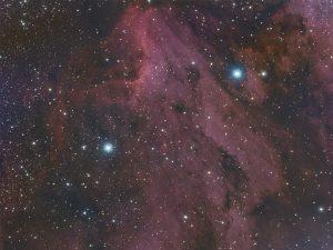 full_moon_pelican-2min_80-800x600